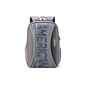 American Tourister Twing 26 Ltrs Grey Casual Backpack  FD0  0  08 002  AllTrickz.jpg