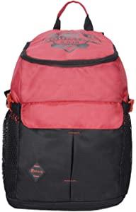 Impulse 40.6 cms Pink School Backpack  Backpack Mountains Peak Pink  AllTrickz.jpg