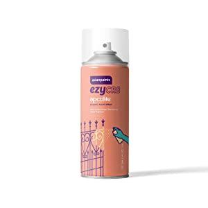 Asian Paints Spray Paint AllTrickz.jpg
